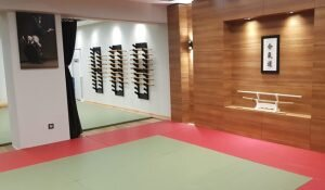 Türkiye'de Aikido Eğitimini Almanız Gereken Yer: Aikimode Aiki Akademi