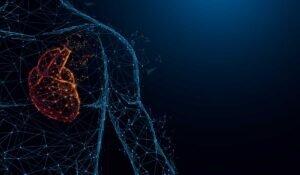 Antrenmanlarda İdeal Kalp Atış Hızı Ne Olmalı?